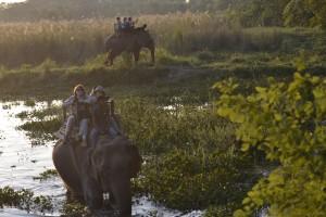 voyageur-attitude  safari