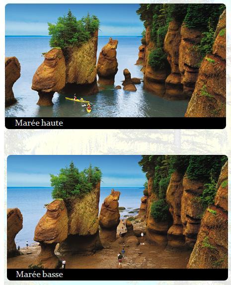 voyageur-attitude Hopewell Rocks