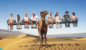 Voyageur Attitude Camel Ride