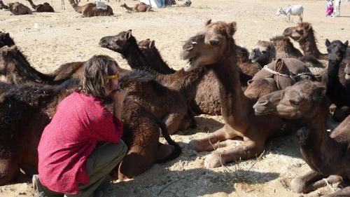 foire aux chameaux de Pushkar