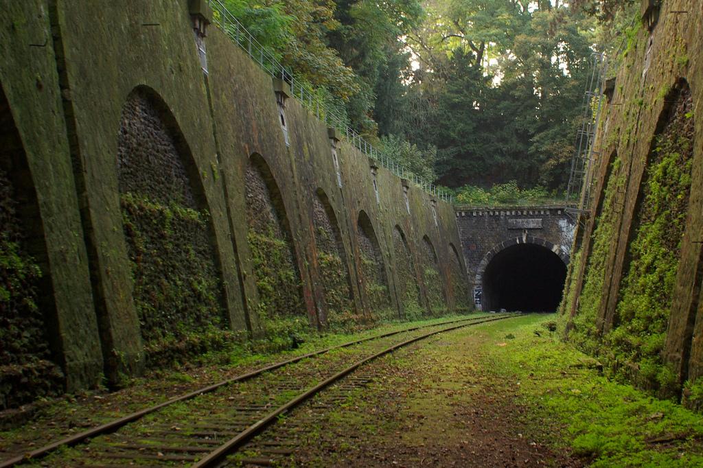 Rails de train