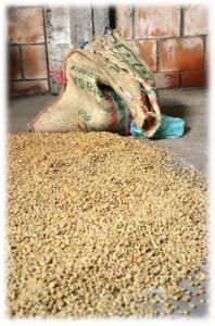 region du cafe colombie
