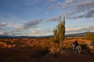 Desert colombie