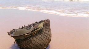 Normandie : les plages du débarquement