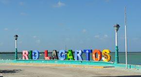 Rio Lagartos : mangrove et flamands roses