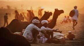 Pushkar : inconnue mais incontournable!