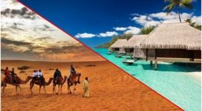 Bataille de titans : plage contre désert