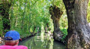 Etape nature au Marais Poitevin
